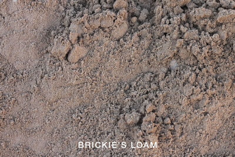 Brickies Loam